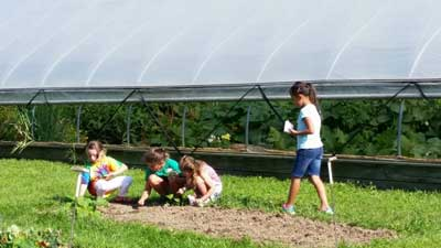 image of campers planting in the garden
