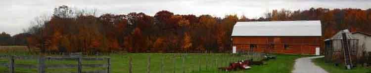 fall at Stratford